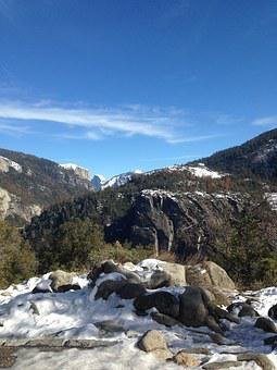 Yosemite, Forest, Scenic, Park, Nature, National