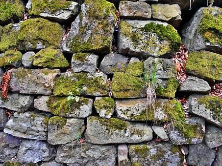 Stone Wall, Lake Dusia, Moss, The Stones, Old, Mossy