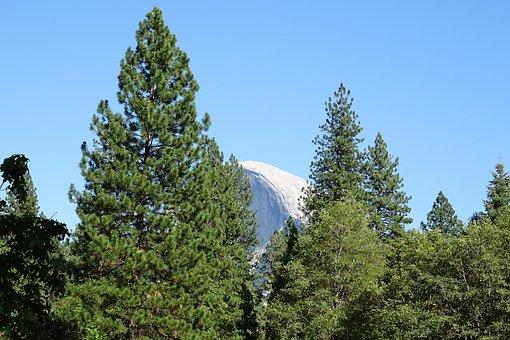 Half Dome, Yosemite, National Park, Rock Formation