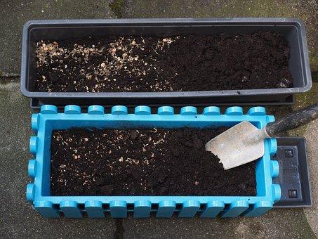 Flower Box, Seed, Seeds, Would Look Like, Flower Seeds