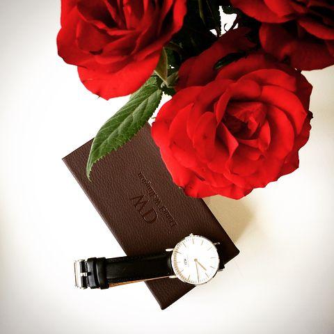 Watch, Rose, Dw, Accessories