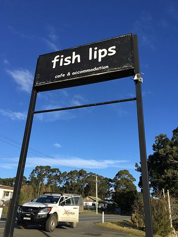 Sign, Fish Lips, Fish, Lips, Funny, Icon, Cafe