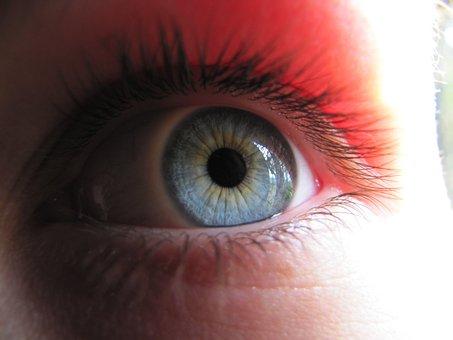 Eye, Blue, Watch, Blue Eye, Macro, Szupermakró