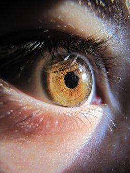 Eye, Macro, Szupermakró, Iris, Watch, Eyelash, Skin