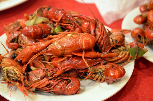 Crayfish, Animals, Food, Crawdads, Crustacean