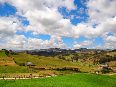Field, Country, Chocontá, Cundinamarca, Colombia