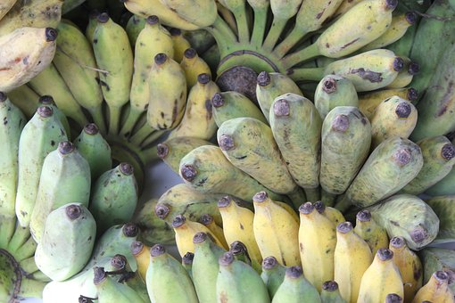 Banana, Cultivated Banana, Asian Banana, Fruit, Organic