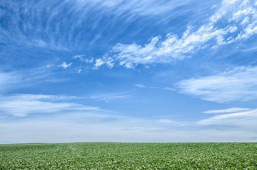 Blue Sky, Sky, Green, Earth, Hokkaido, Japan, Cloud