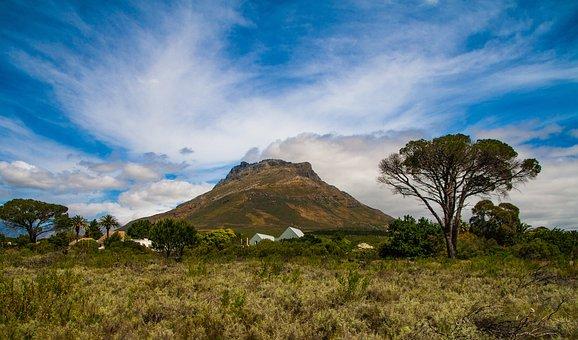 Stellenbosch, Mountain, Cape, Africa, Scenery, Blue