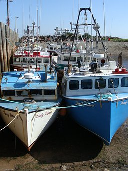 Boats, Bay Of Fundy, Tide Out, Summer, Strong Shadows