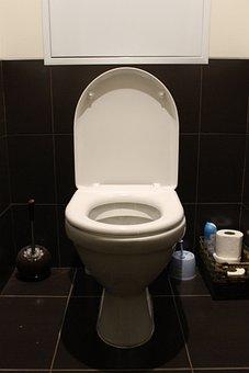 Toilet, Wc, Toilet Room