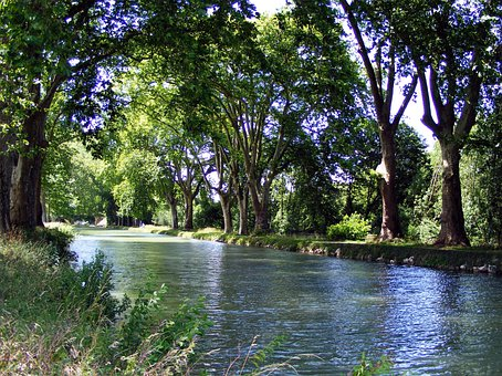 River, Channel, Trees, Nature, Doubs, Dole, France
