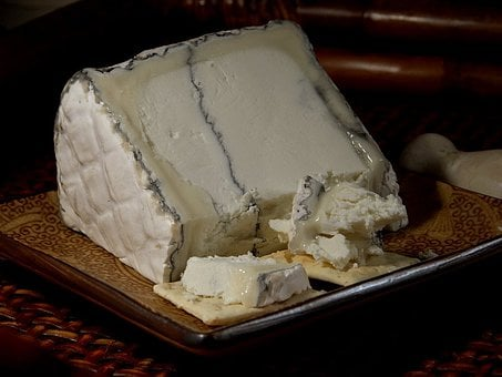 Humboldt Fog Cheese, Blue Mold, Mold, Noble Mold
