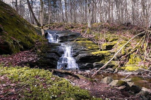 Water, Forest, Waterfall, Gothenburg, Lerum