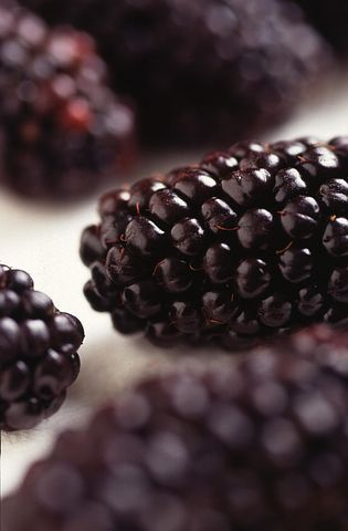 Blackberries, Modified, Genetically, Fruit, Blueberries