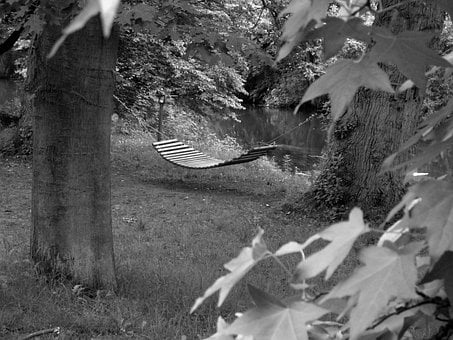 Lying Mat, Black White, Meadow, Nature