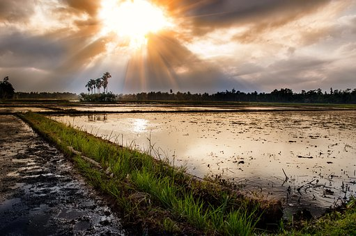 Sunset, Aceh, Indonesia, Landscape, Wilderness, Scenery