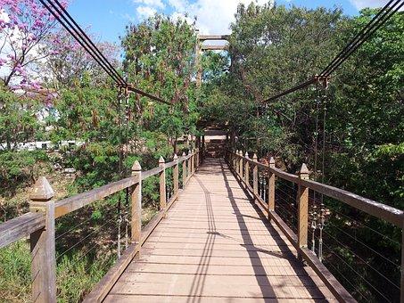Bridge In Pirenópolis, Path, Trees