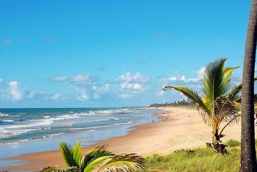 Brazilwood, Costa Da Sauipe, Ocean, Beach, Shore