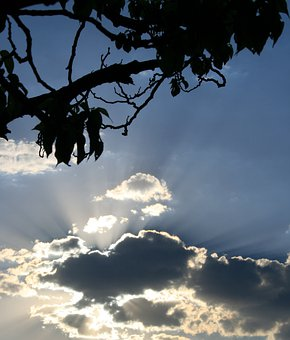 Clouds, Dark, Edging, Bright, Shiny, Light Rays