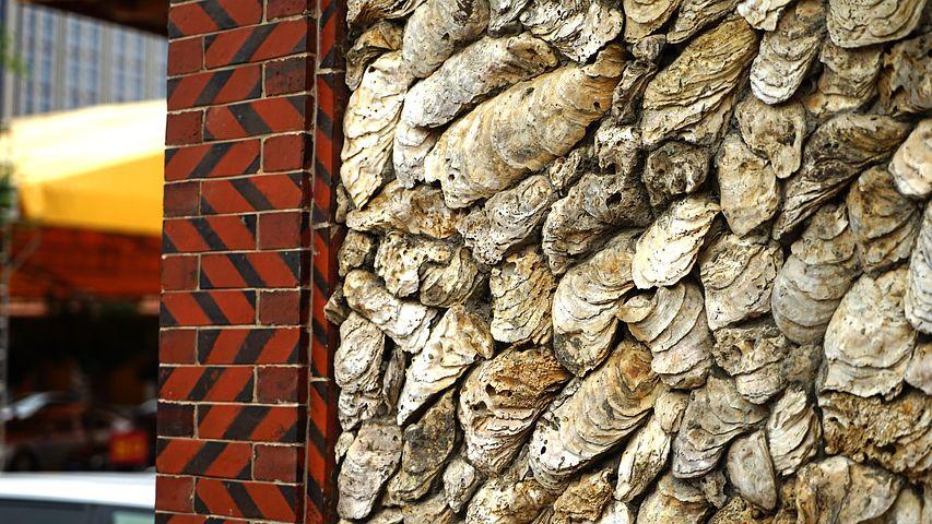 Clam Shell, House, China, Beach, Folk