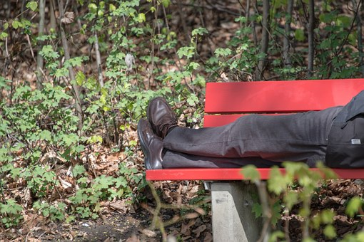 Bank, Park Bench, Bench, Forest, Rest, Resting Place