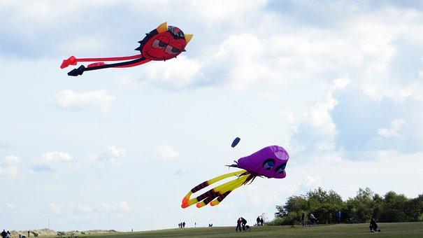 Dragons, Play, Fun, Hobby, Air, Fly, Sky, Wind, Dance