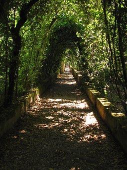 Florence, Boboli Garden, Italy, Romantic, Haunting