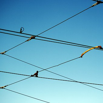 Upper Lines, Power Lines, Wires, Networked, Network