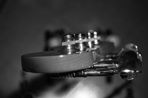 Electric Bass, Bass, Bassguitar, Low, Strings, Music