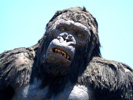 Warner Brothers, King Kong, Gorilla, Movie, Ape, Monkey