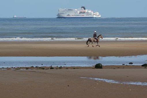 Horse, Beach, Beach Rider, Reiter, Sea, Ship