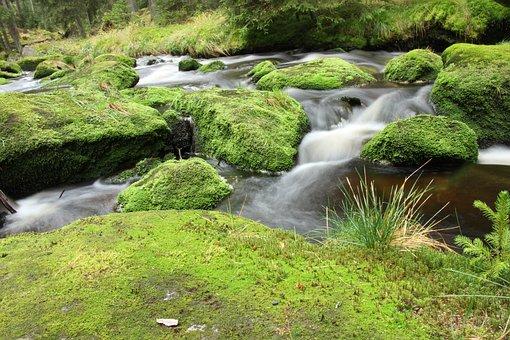 River, Nature, Water, Stone, Mountain Kvilda