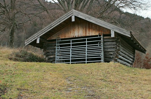 Building, Shelter, Cattle Shed, Weather Protection