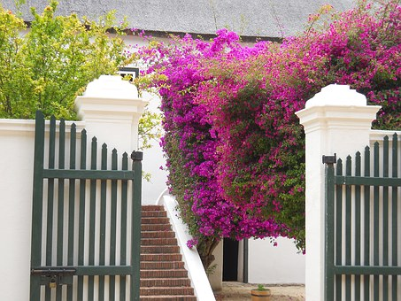 South Africa, Winery, Boschendal, Home, Winelands