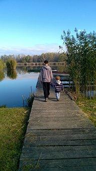 Autumn, Agricultural Logistic, Nature, Landscape, Water