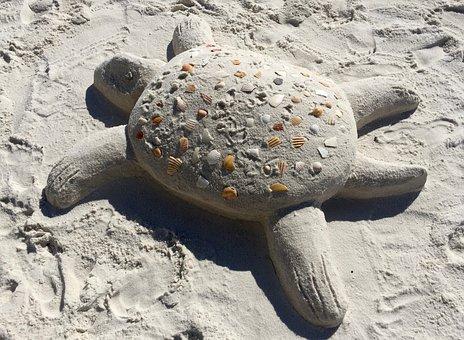 Sand, Beach, Turtle, Beach Sand, Summer, Tropical