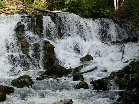 Centennial Falls, Rushing, Water, Nature, Natural Water