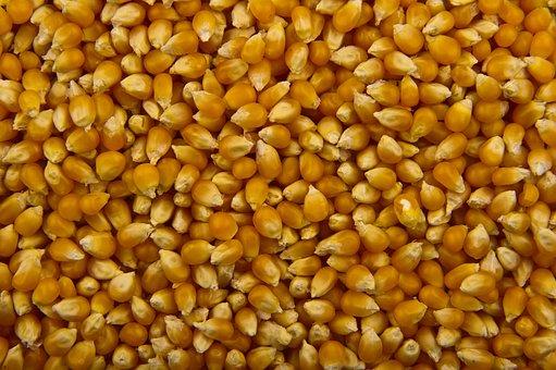 Food, Popcorn, Orange, Natural, Eating