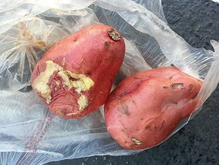 Rotten Sweet Potatoes, Japan Market, Exchange Is Not