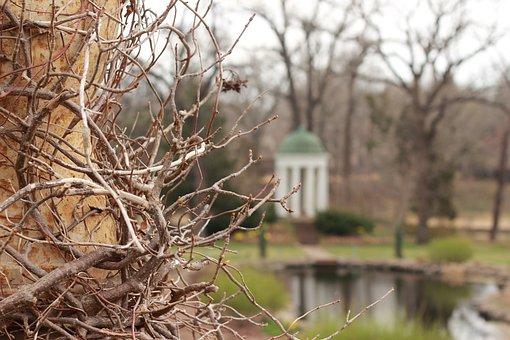 Park, Tree, Landscape, Outdoor, Blur, Water, Tulsa