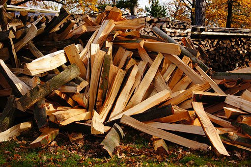 Wood, Wood Trunks, Laminated Wood, Tree, Autumn
