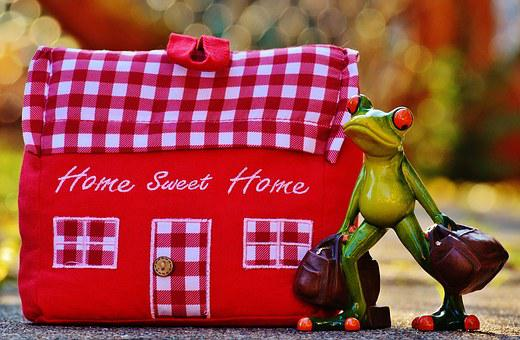 House, At Home, Arrive, Frog, Funny, Trolley, Fabric