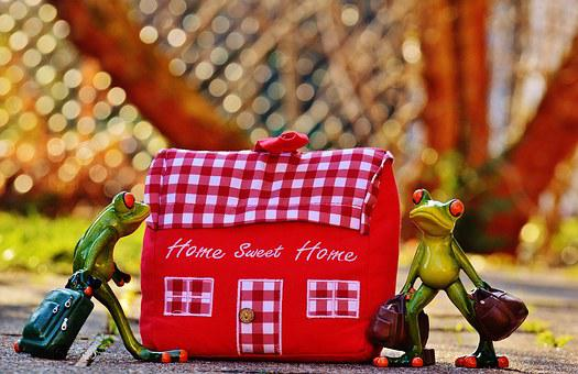 Home, At Home, Arrive, Frog, Funny, Trolley, Fabric