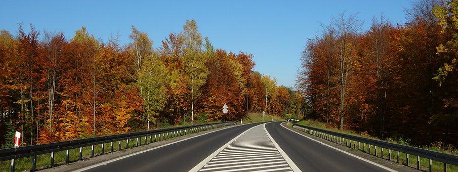 Autumn, Foliage, Way, Autumn Gold, Landscape, Colors