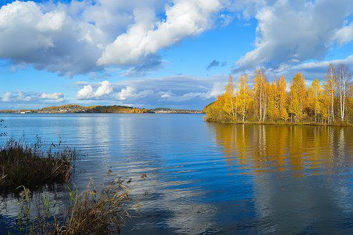 Autumn, Pond, River, Water, Forest, Yellow Forest