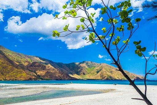 Nature, Fresh, Beautiful, Cool, Natural, Green, Summer
