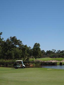 Golf Cart, Golf Course, Buggy, Hazard, Vertical