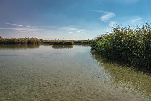 Laguna, Lake, Fishing, Park, Nature, Landscape, Water