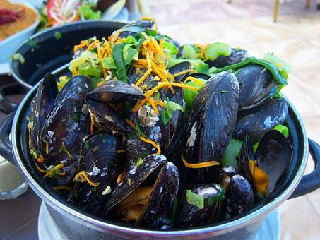 Mussels, Flat, Kitchen, Netherlands, Food, Eat, Meals